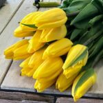 люльпаны
